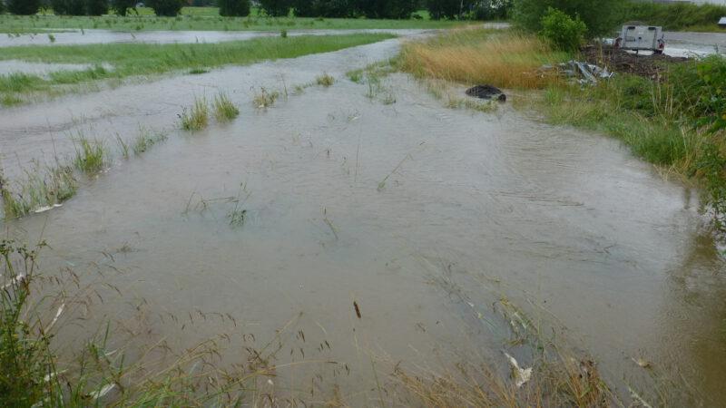 Boehringer-Laborerweiterung – Hochwasserauswirkungen – Umweltschutz – Klimakrise